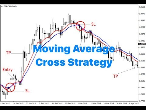 100% profitable Moving Average crossover strategy - Top Trading