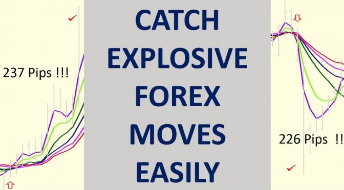 Explosive Forex Moves  The FREE Multiple Moving Average