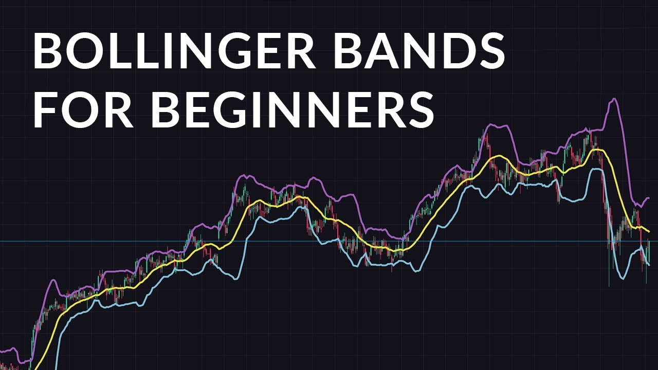 Binary options a comprehensive beginner guide to get going